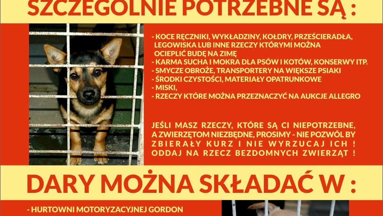 Zbiórka darów na rzecz Schroniska dla Bezdomnych Zwierząt w Krotoszynie