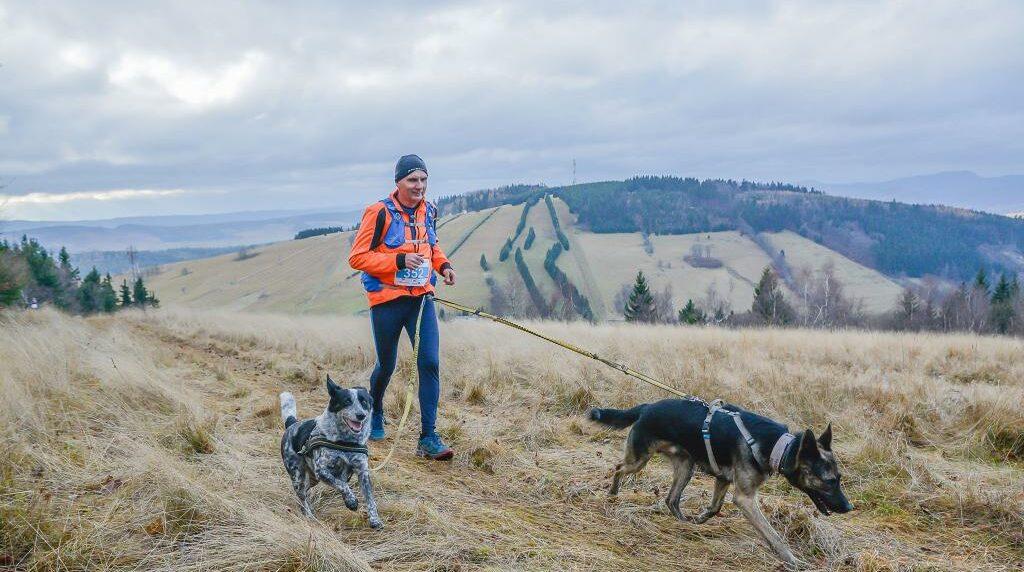 Antek - pierwszy na świecie niewidomy pies, który przebiegł półmaraton.