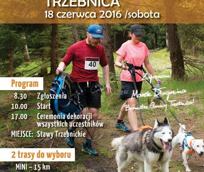 Puchar Polski w Dogtrekkingu - Trzebnica 2016